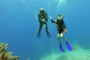 SCUBA Diving St Lucia National Marine Reserve