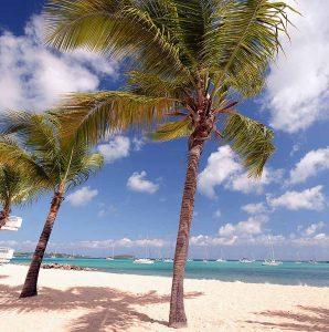 Sint Maarten Le Beach